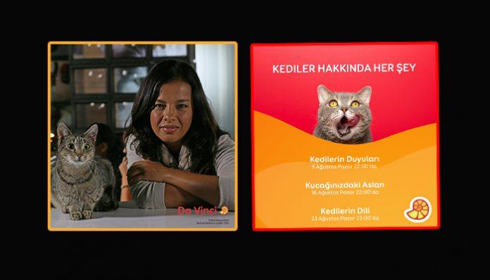 Da Vinci'den kediler hakkında her şeyi anlatan belgesel serisi